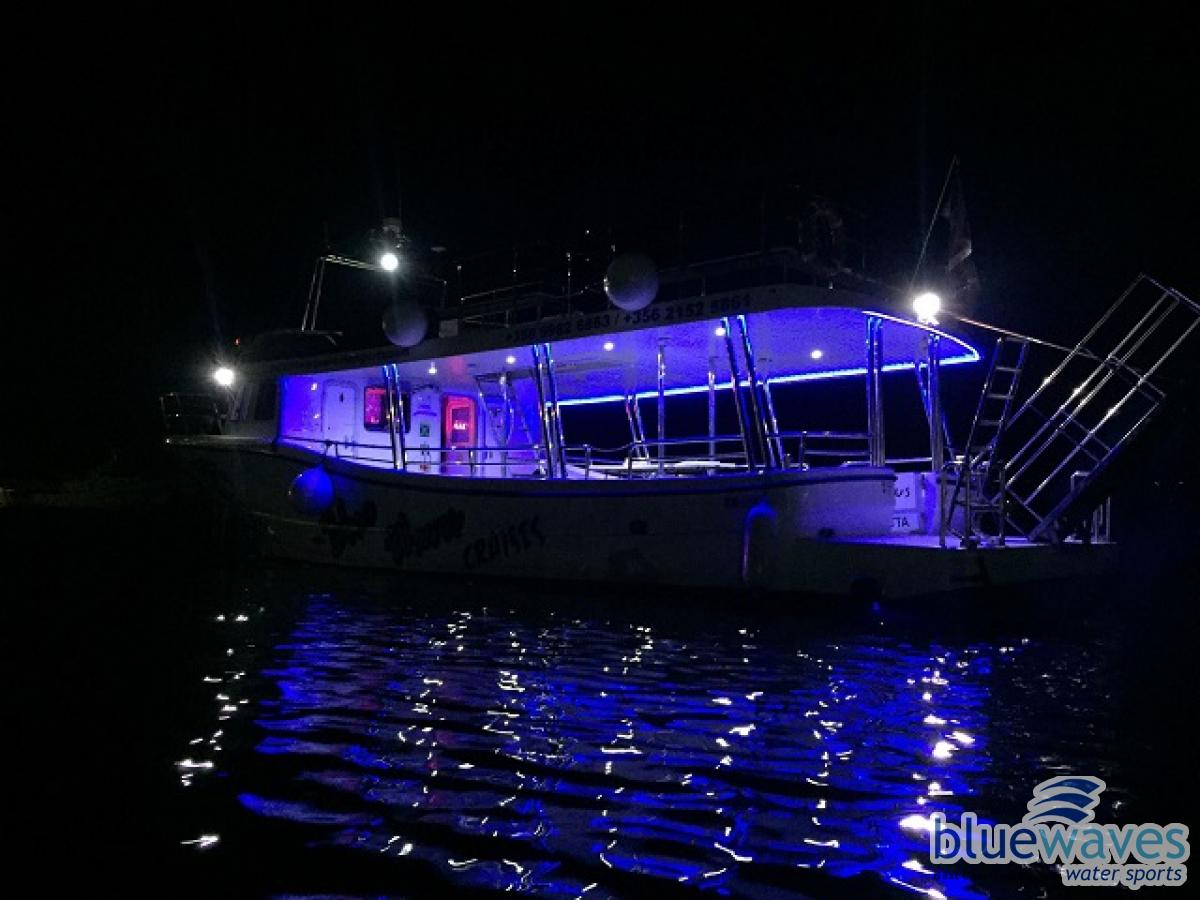 Night Charter with Pegasus