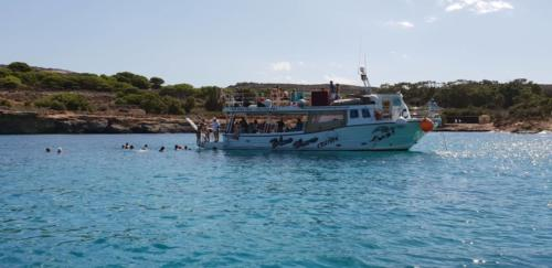 Trips and charters to Blue lagoon and around Comino