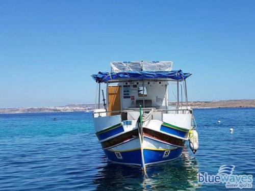 Luzzu boat trips